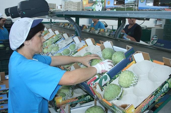 El Consistorio sexitano promueve un curso de manipulador para envasadoras de fruta