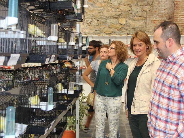 La 23 edición del concurso ornitológico reúne en Motril casi un millar de especies