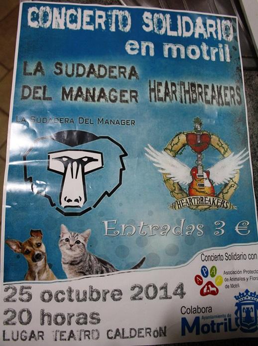 Concierto de La Sudadera del Manager y de Heartbreakers en favor de APAF Motril en el Calderón