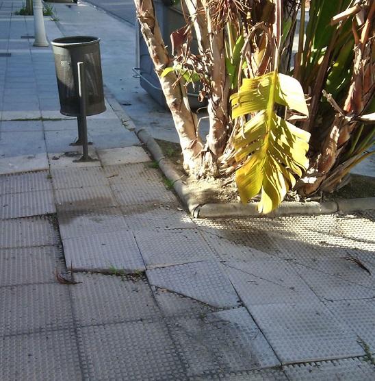 El Partido Andalucista de Motril denuncia la falta de mantenimiento en Playa Granada