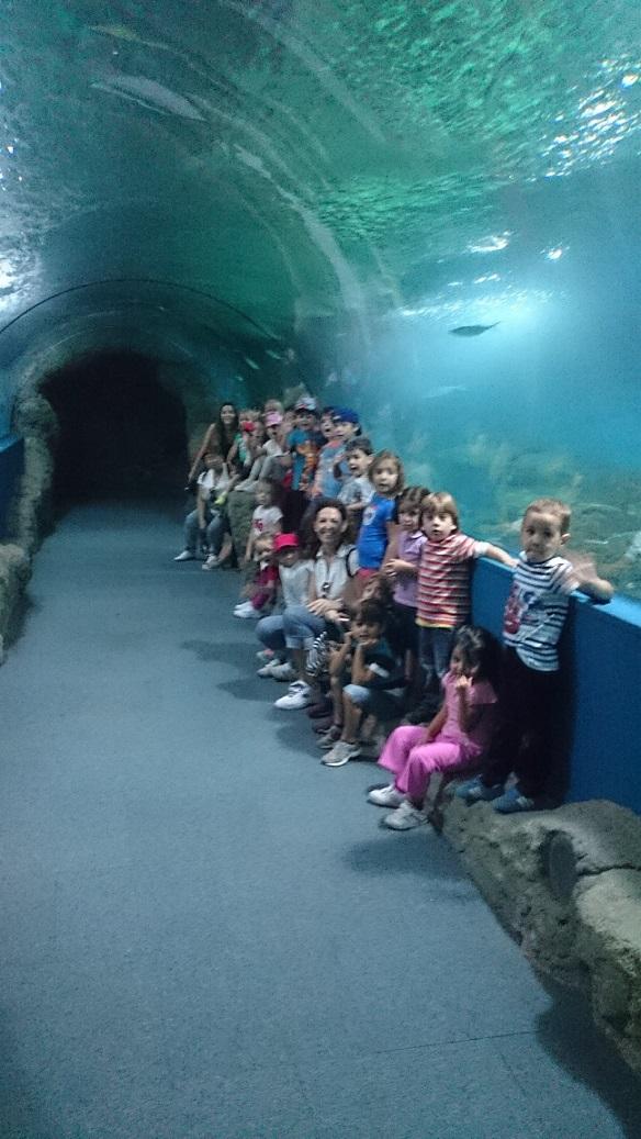 Almuñécar completa su programa educativo  medioambiental con  visitas al Acuario