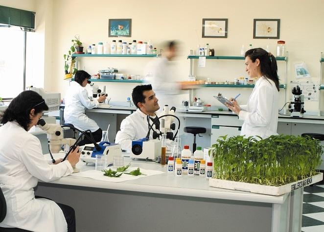 Koppert patrocina el Máster en Sanidad Vegetal organizado por cuatro universidades del arco mediterráneo
