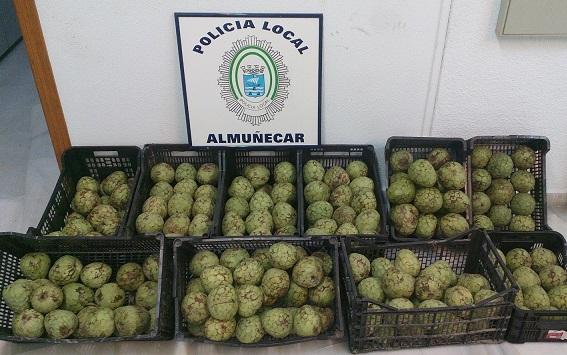 La Policía Local de Almuñécar y la Guardia Civil decomisan 150 Kg de chirimoyas en el Rastrillo Solidarios sexitano