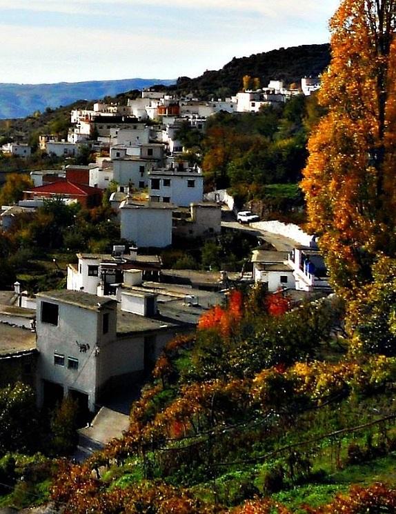 El Ministerio de Cultura espera respuesta de la Junta si accede a que la candidatura Alpujarra sea debatida en el Consejo Patrimonio