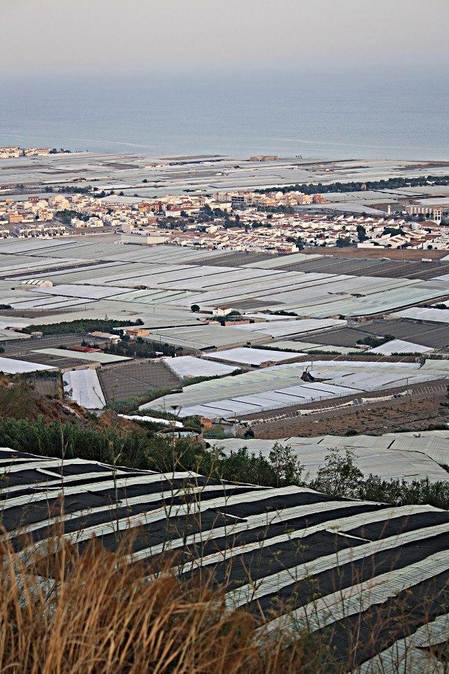 La Junta desestima la constitución como municipio de Carchuna-Calahonda por segregación de Motril