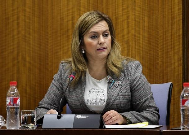 Serrano asegura que la ampliación del plazo para aprobar el Plan del Litoral pretende mejorarlo y lograr un mayor consenso social