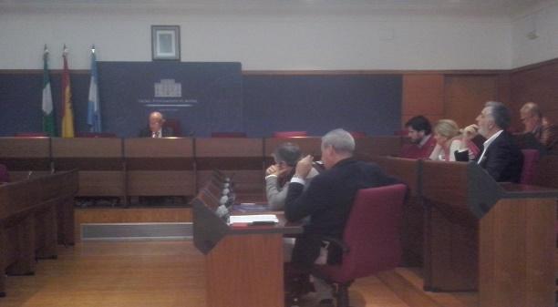 """Los andalucistas denuncian"""" la reiterada ausencia de Herrera a todas las reuniones del Consejo de Turismo"""""""