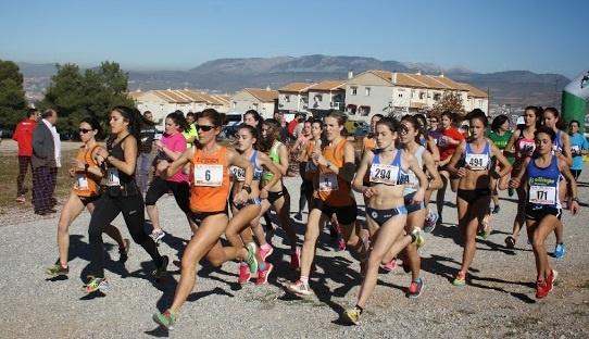 El Club Atletismo Ciudad de Motril en el Cross de Navidad Villa de La Zubia