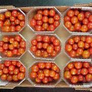 Conservas a cambio de 'cherrys' de Motril