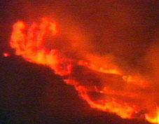 Los Verdes Andalucía apoyan a los alcaldes de los municipios afectados por el incendio de la Sierra de Bodíjar